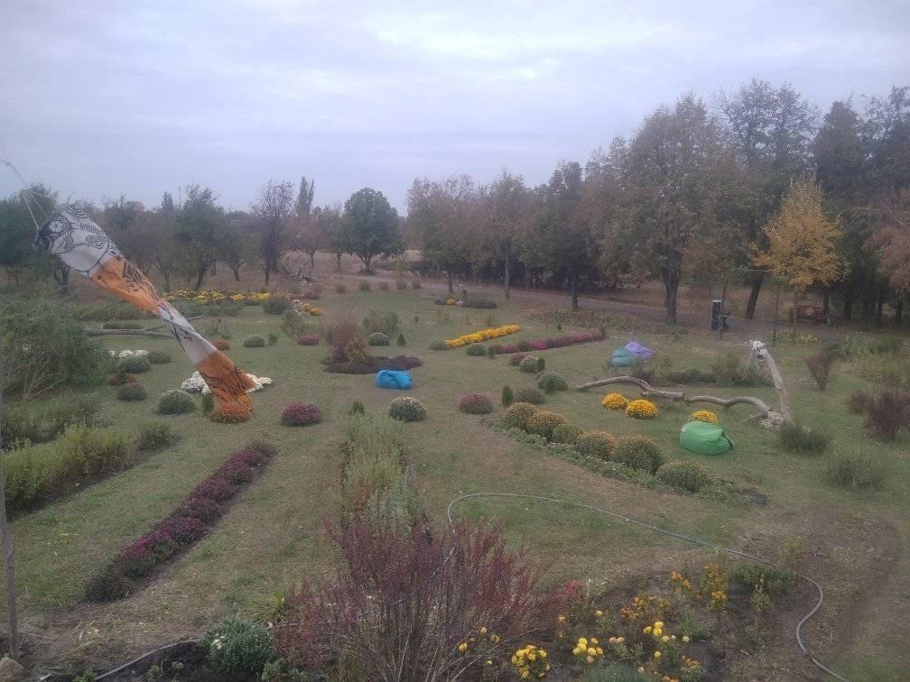 Ботанічний сад Херсонського університету поповнився деревами авокадо