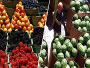 На Херсонщині підводять невтішні підсумки овочевого літа