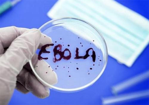 Херсонские врачи готовятся встречать лихорадку Эбола