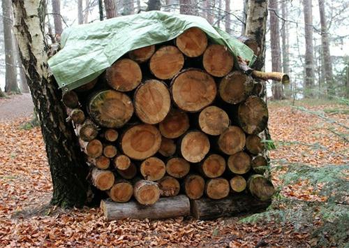 На Херсонщине растаскивают запасы дров