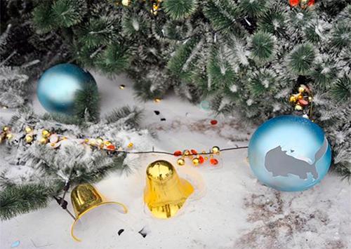 Покушение на новогоднюю елку в Голой Пристани