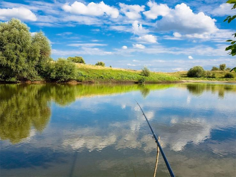 Рыболов на Херсонщине едва на корм рыбам не пошел