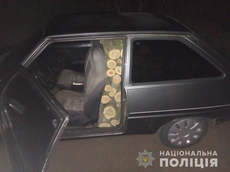 Поліцейські Херсонщини викрили три факти незаконної порубки дерев