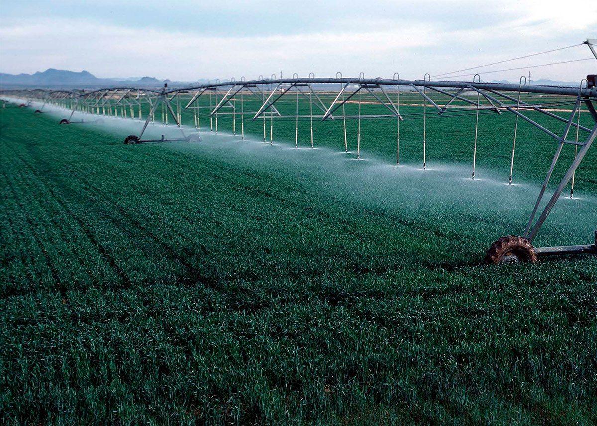 На Херсонщине в этом году на орошение взято почти миллиард кубометров воды из Днепра