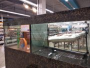 Купание хулигана в аквариуме обошлось херсонскому супермаркету в копеечку