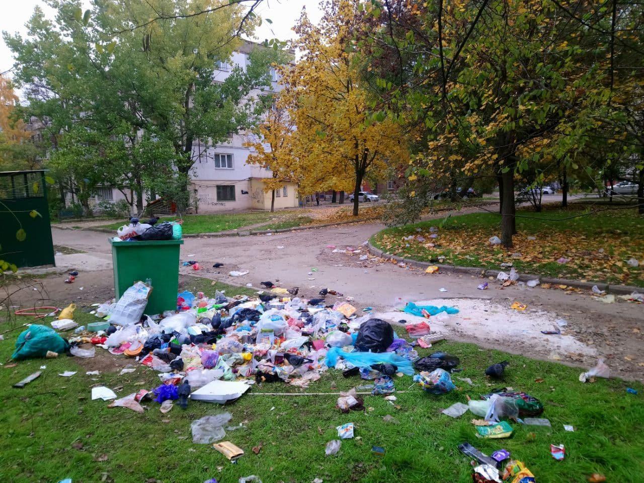 В Херсоне в день выборов разрастаются стихийные мусорные свалки