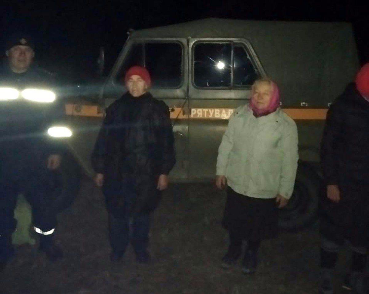 На Херсонщине спасатели разыскали трёх пенсионерок, заблудившихся в лесу