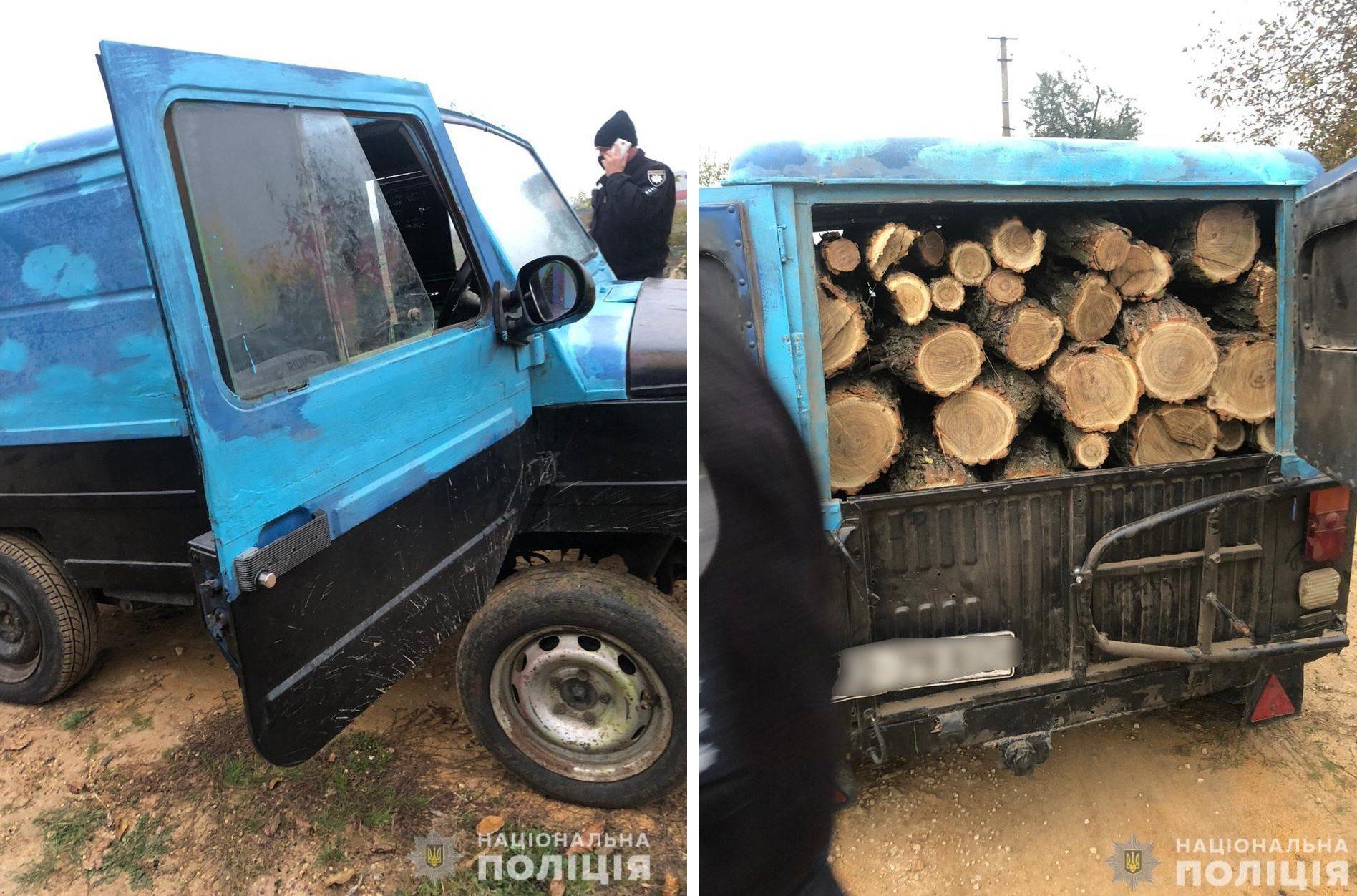 В Херсонській області поліцейські затримали лісового браконьєра з вантажем деревини