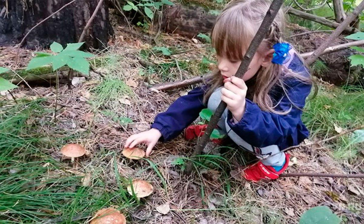 В лесу под Херсоном маленькая девочка родителей напугала