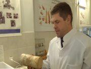 Учёные из Херсона создали пластик из грибов