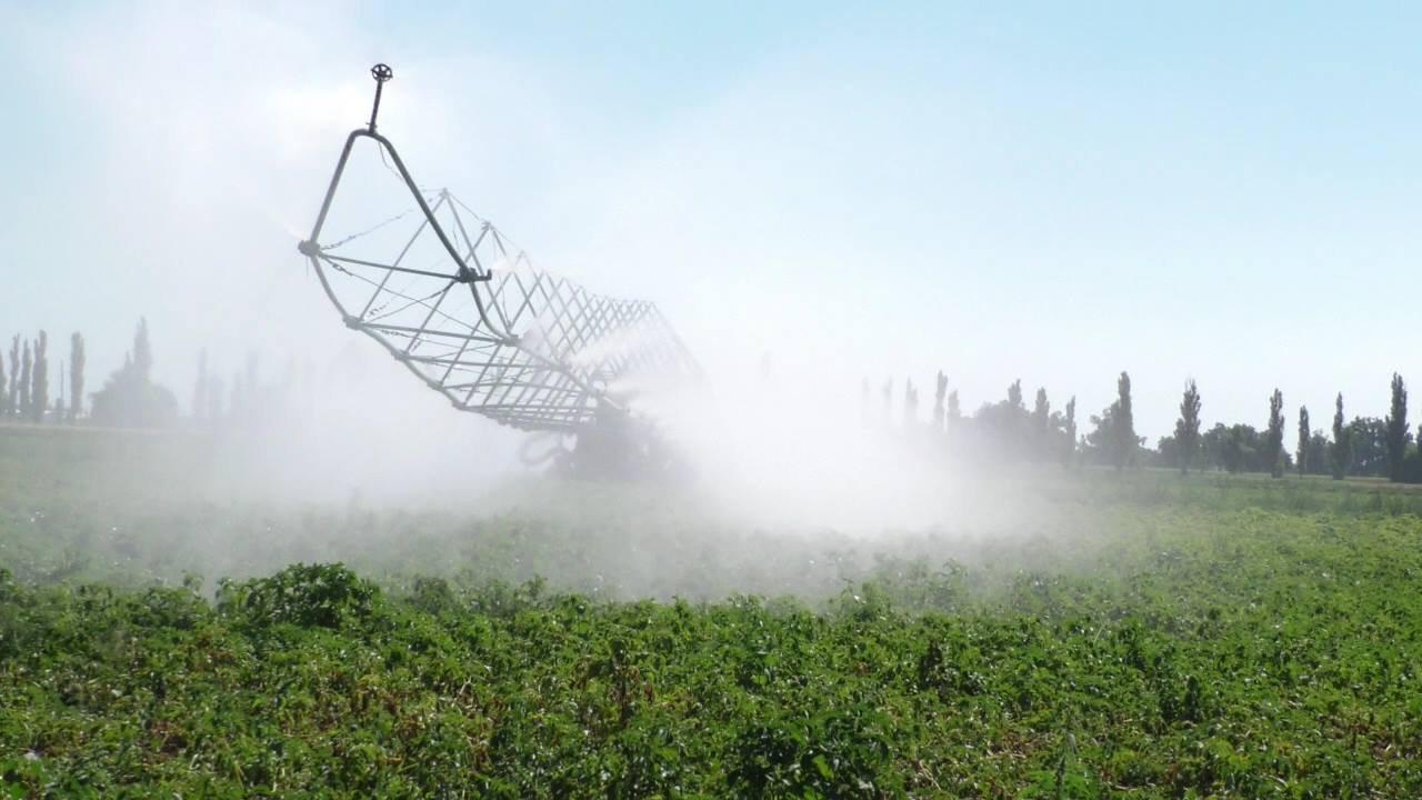 На Херсонщині води на полив забирають дедалі більше