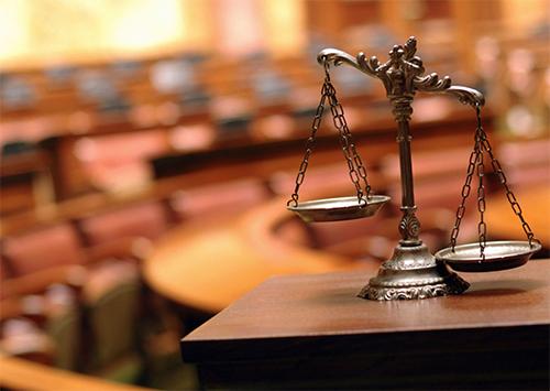 Суд снова отказал в приостановлении моратория на вырубку леса