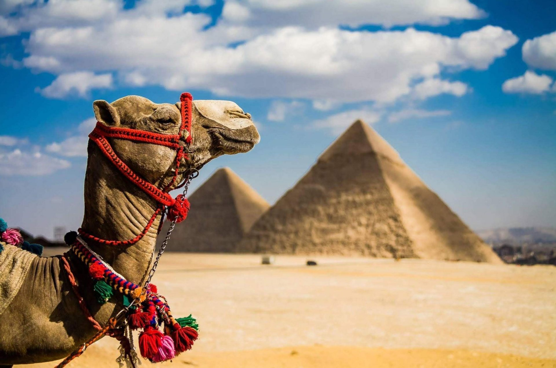 Египет ужесточает проверку украинских туристов на коронавирус